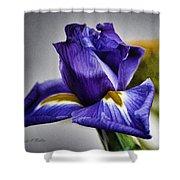 Iris Flower Macro Shower Curtain