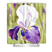 Iris Flower Purple Dance Shower Curtain