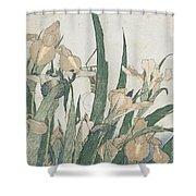 Iris Flowers And Grasshopper Shower Curtain