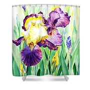Iris Flowers Garden Shower Curtain