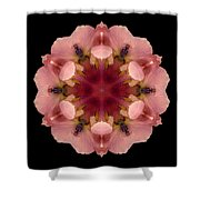 Iris Germanica Flower Mandala Shower Curtain by David J Bookbinder