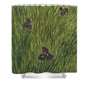 Iris In A Field Shower Curtain