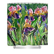 Iris Inspiration Shower Curtain