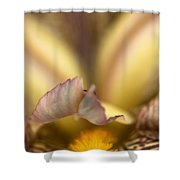 Iris Mouth Shower Curtain