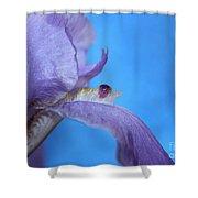 Iris Oasis Shower Curtain