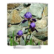 Iris Portrait Shower Curtain