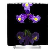 Iris Reflection Shower Curtain