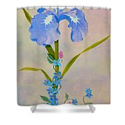 Iris With Forget Me Nots Shower Curtain