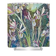 Irises And Doodles Shower Curtain