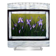 Irises And Old Boards - Weathered Wood Shower Curtain