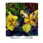 Irises Shower Curtain