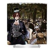 Irish Red And White Setter Art Canvas Print Shower Curtain