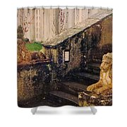 Irish Steps Shower Curtain