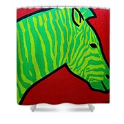 Irish Zebra Shower Curtain