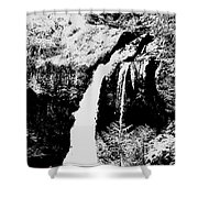 Iron Creek Falls Bw Shower Curtain