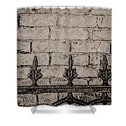 Iron Fence - New Orleans Shower Curtain