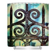 Iron Gate Detail Shower Curtain