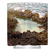 Ironshore Tidewater Pool Shower Curtain