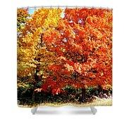 Is Autumn Already Shower Curtain