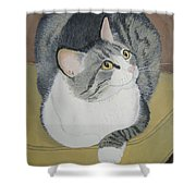 Is Dinner Ready Shower Curtain