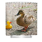 Is Everything Ducky? Shower Curtain