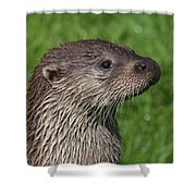 Is It Dinner Time Shower Curtain