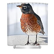 Is It Spring Yet? Shower Curtain