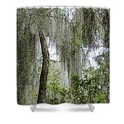 Island Moss Shower Curtain
