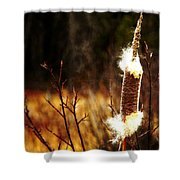Island Park Cattail Shower Curtain