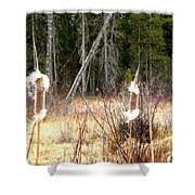 Island Park Cattails Shower Curtain