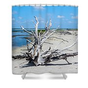 Island Tree Shower Curtain