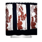 Islands Of Light Shower Curtain