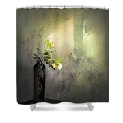 Isn't It Romantic Shower Curtain