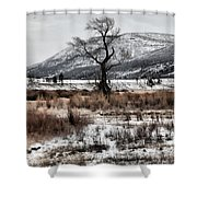 Isolation In Yellowstone Shower Curtain