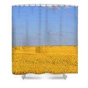 Israel Negev Habesor Landscape Shower Curtain