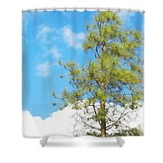 It Is A New Day Shower Curtain