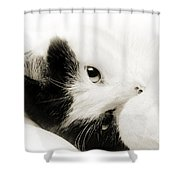 It Is Hard To Be So Cute Shower Curtain by Andee Design