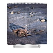 It Matters To This One Isle Of Palms Sc Shower Curtain