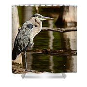 It Pays To Practice Yoga Shower Curtain by Lori Tambakis