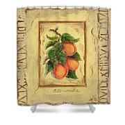 Italian Fruit Apricots Shower Curtain