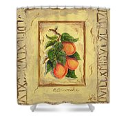 Italian Fruit Apricots Shower Curtain