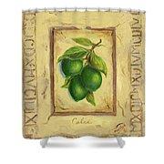 Italian Fruit Limes Shower Curtain