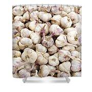 Italian Garlic Bulbs Shower Curtain