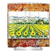 Italy Sketches Sunflowers Of Tuscany Shower Curtain