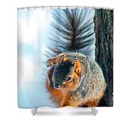 Itchy Dance Shower Curtain