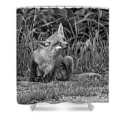Itchy Monochrome Shower Curtain