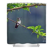 It's A Big World Out There... Shower Curtain