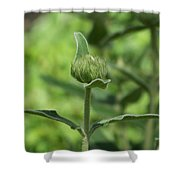 Its A Green World Shower Curtain