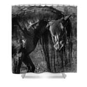 The Mane Thing Shower Curtain