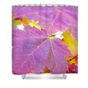 It's Fall Shower Curtain